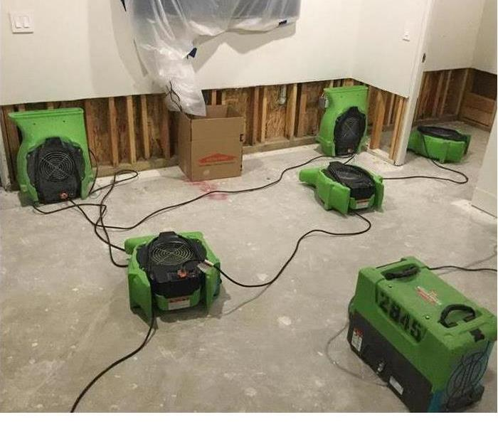 Removing Mold After Water Loss After