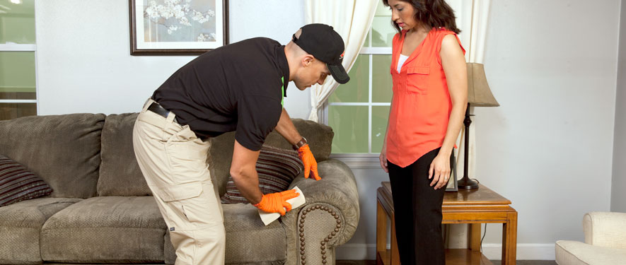 Costa Mesa, CA carpet upholstery cleaning